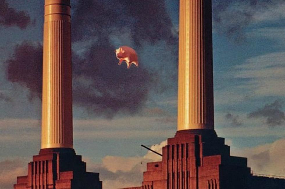 Pink Floyd's Pig Is Up for Auction