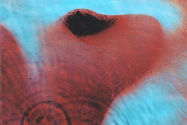 How Pink Floyd Found Their Collective Voice With 'Meddle'