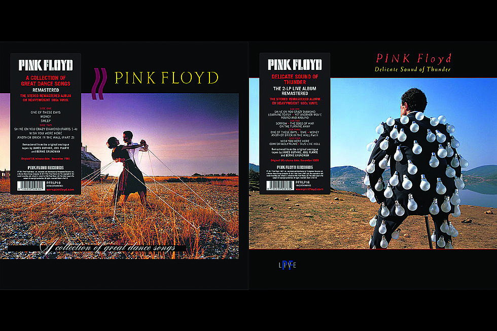 Pink Floyd Announce Reissues of Two '80s Albums on Vinyl