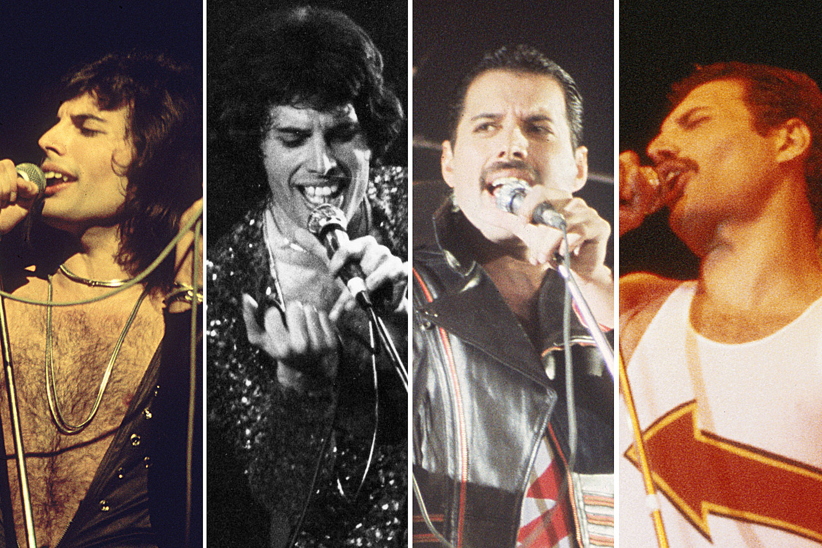 Freddie Mercury: The Man, the Star     In His Own Words