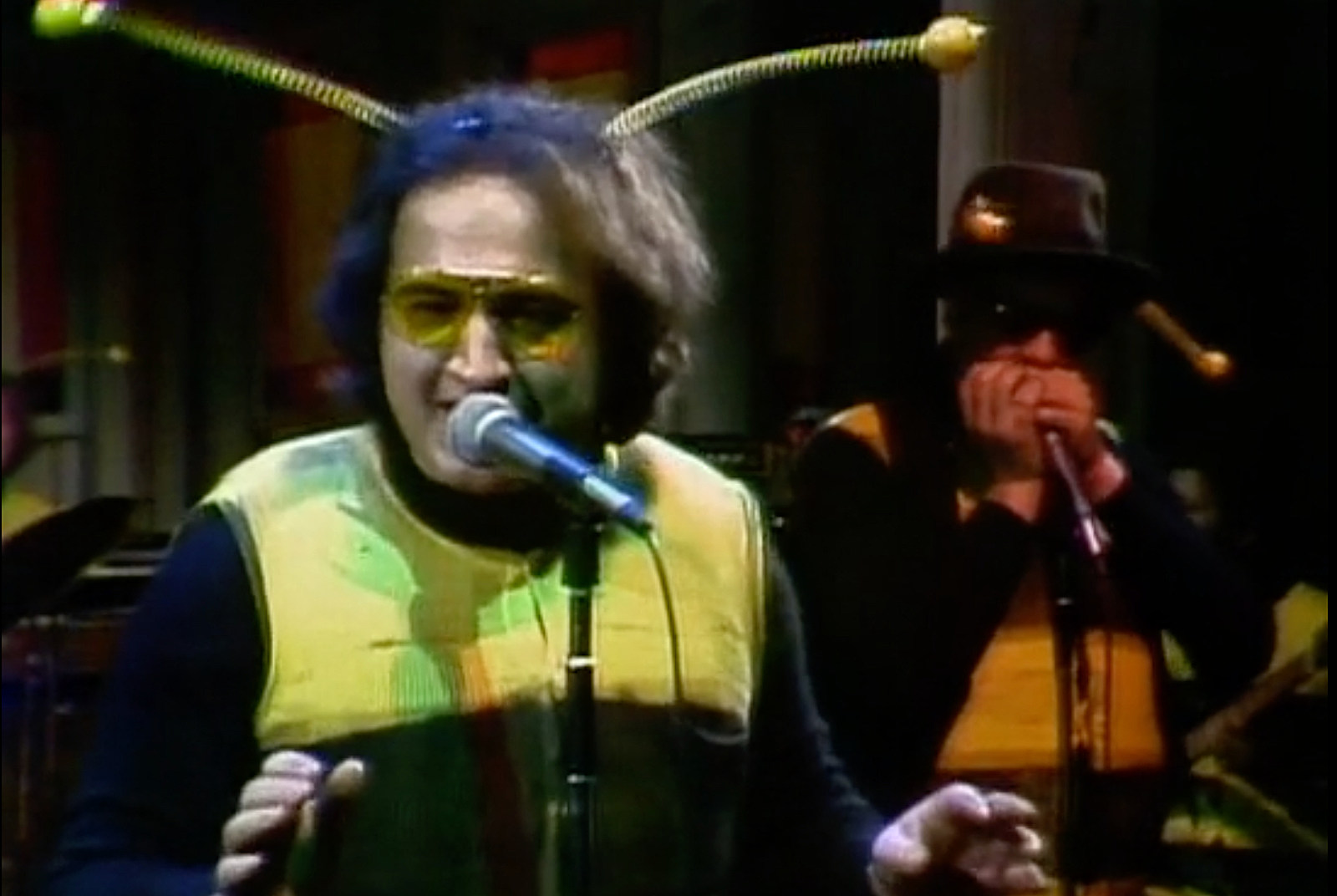Why the Blues Brothers Made Their 'SNL' Debut in Bee Costumes