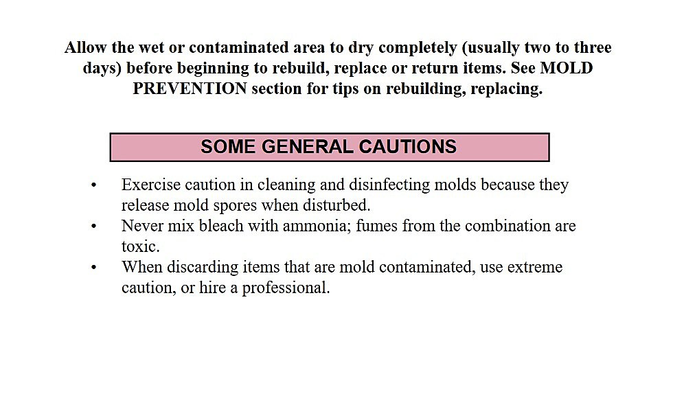 FEMA Guidelines To Get Rid Of Mold And Mildew In Flooded Homes