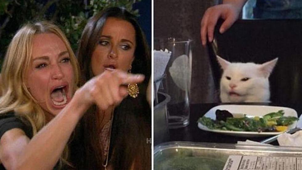 lady yelling at cat memes