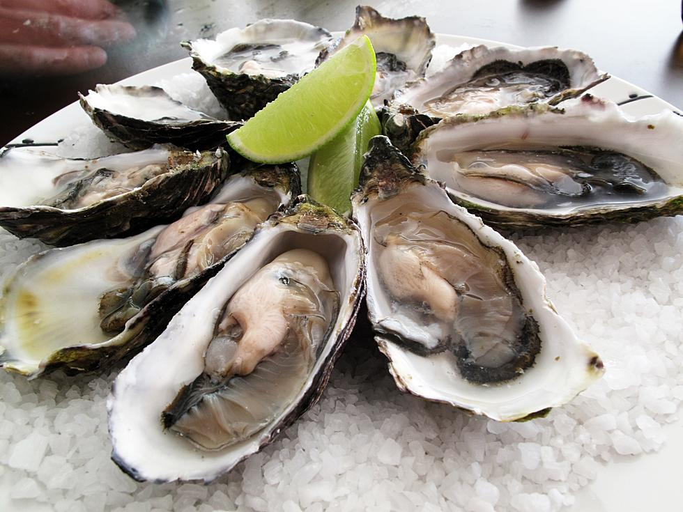 Louisiana Takes Step To Save Coast, Oyster Industry
