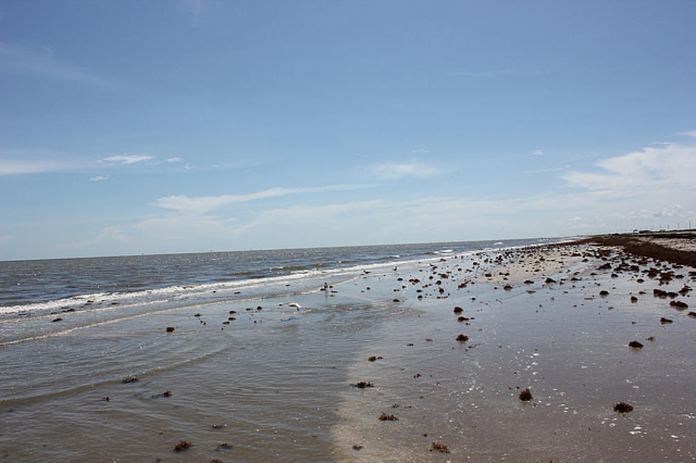 12 Louisiana Beaches Show High Bacteria Levels