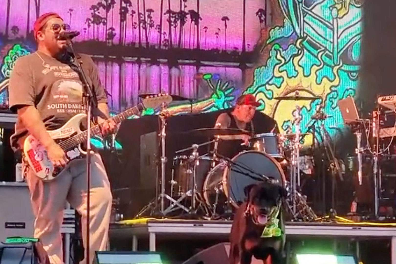 A Dog Played Fetch Onstage During Sublime's Riot Fest Set