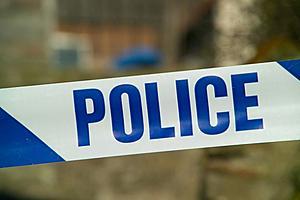 Wayne Mom Left 2 Infants Home Alone, Police Say