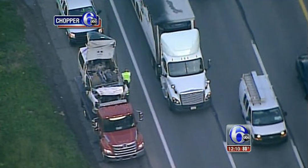 Puppies get loose in Pennsylvania Turnpike crash