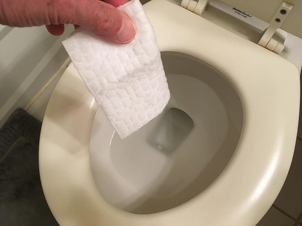 Nj Trying To Pass Do Not Flush Law For Bathroom Wipes