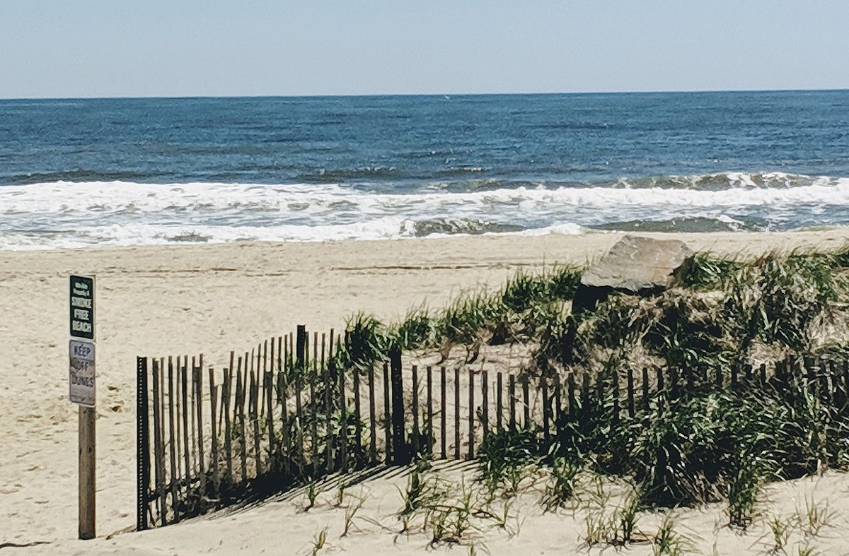 Where to go to enjoy a great Jersey summer weekend!