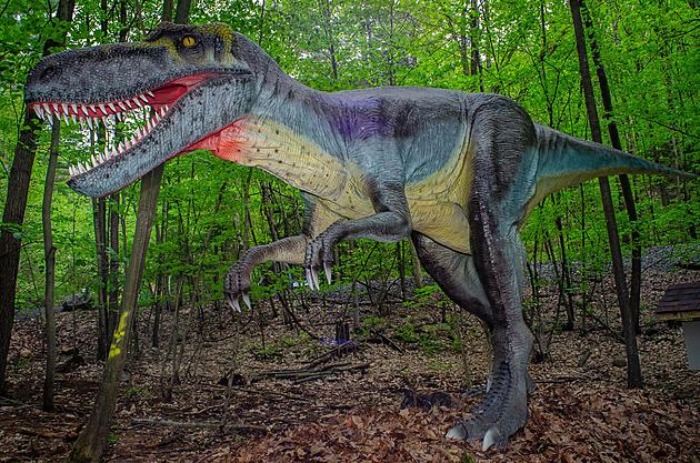 Dinosaur Park Opens in New York