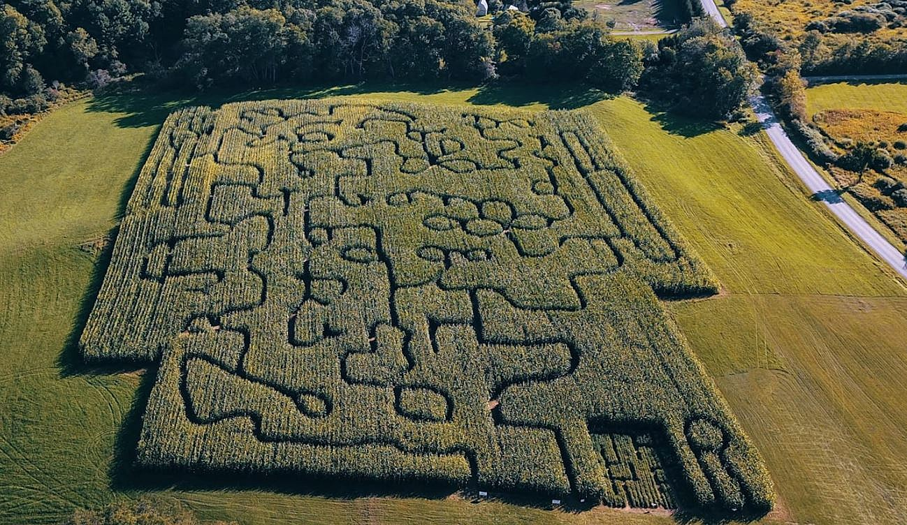 Fly Creek Valley Corn Maze And Pumpkin Patch Ready For 2020