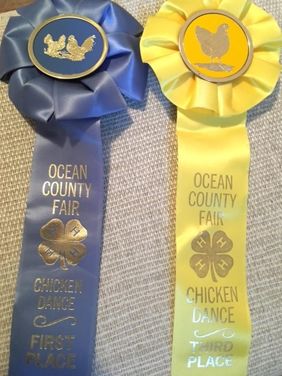 Fond Memories Of The Ocean County Fair