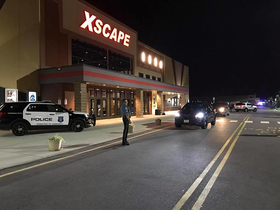 Inert grenade, two handguns found in car at Howell theater
