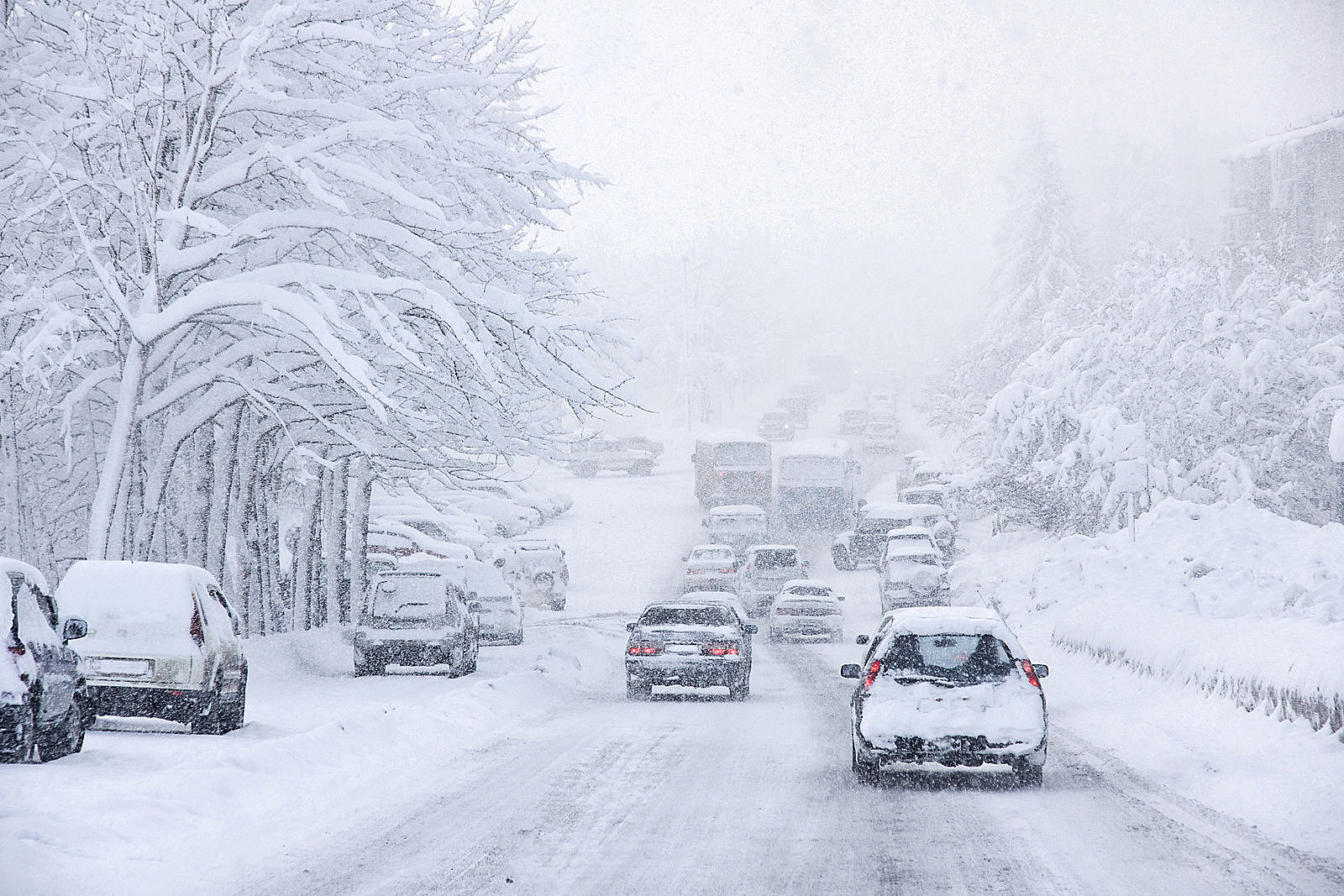 WOW! Will We Get A Lot of Snow This Winter At The Jersey Shore?
