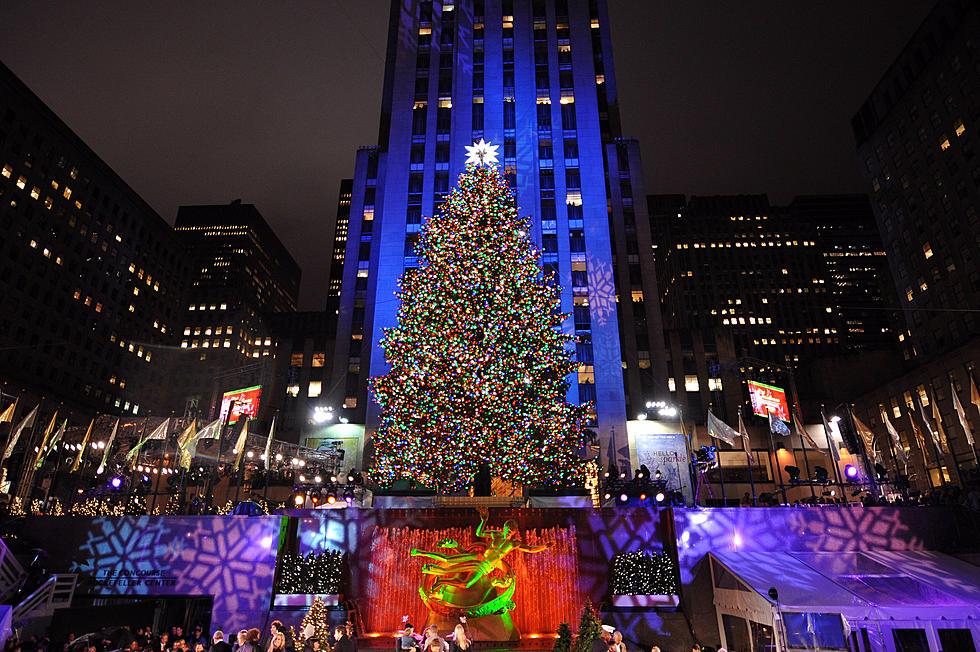Christmas Tree In Nyc.2016 Rockefeller Christmas Tree Will Soon Head To Nyc