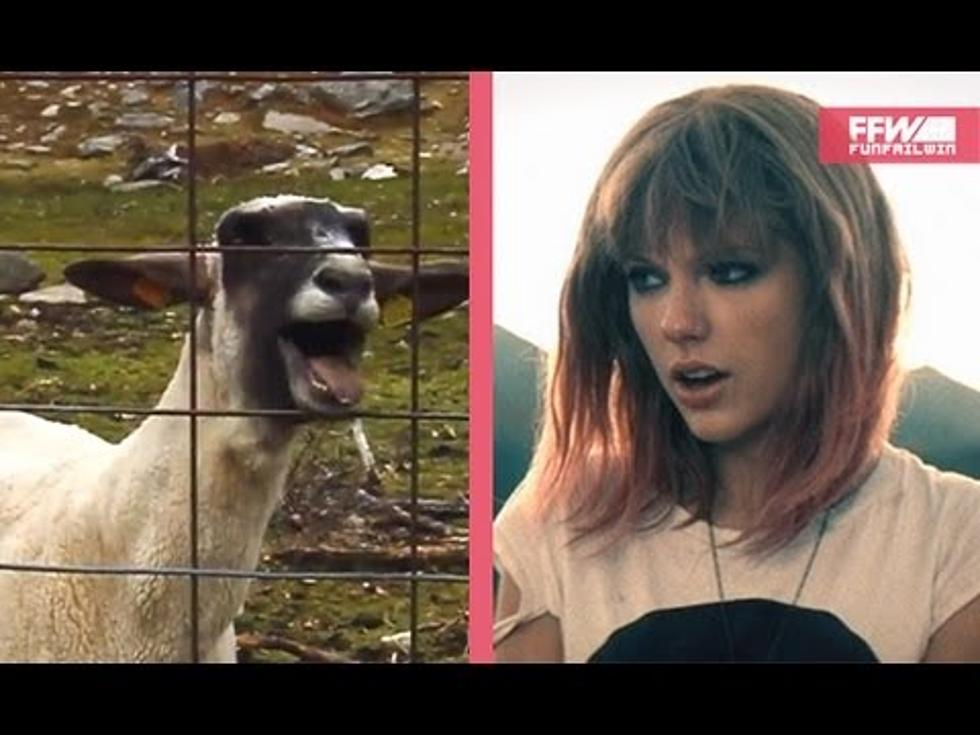 Watch The Goat Remix Of Taylor Swift S I Knew You Were Trouble Video
