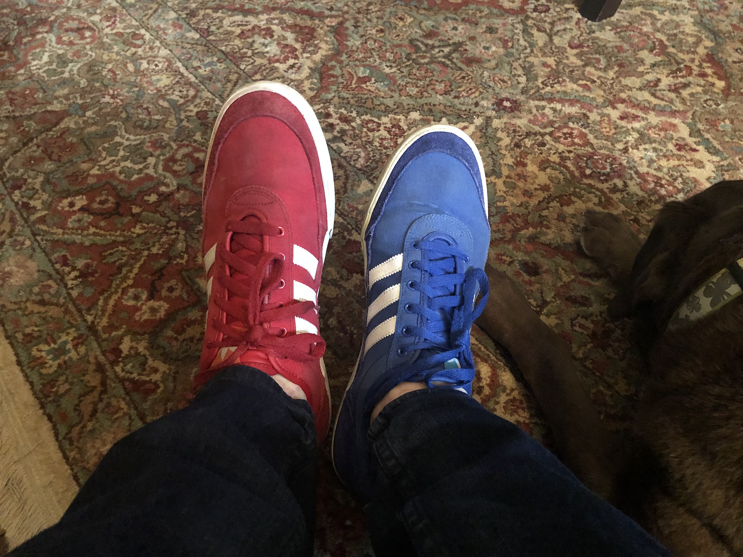 Different-Colored Shoes Day