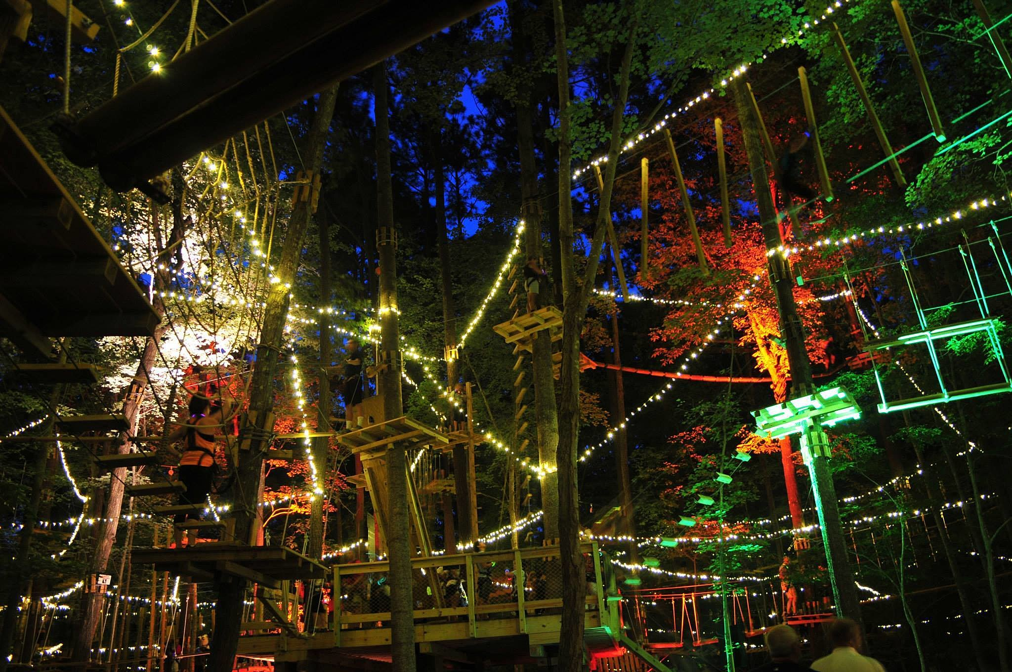 Have A Glow In The Dark Treetop Adventure At This New York Park