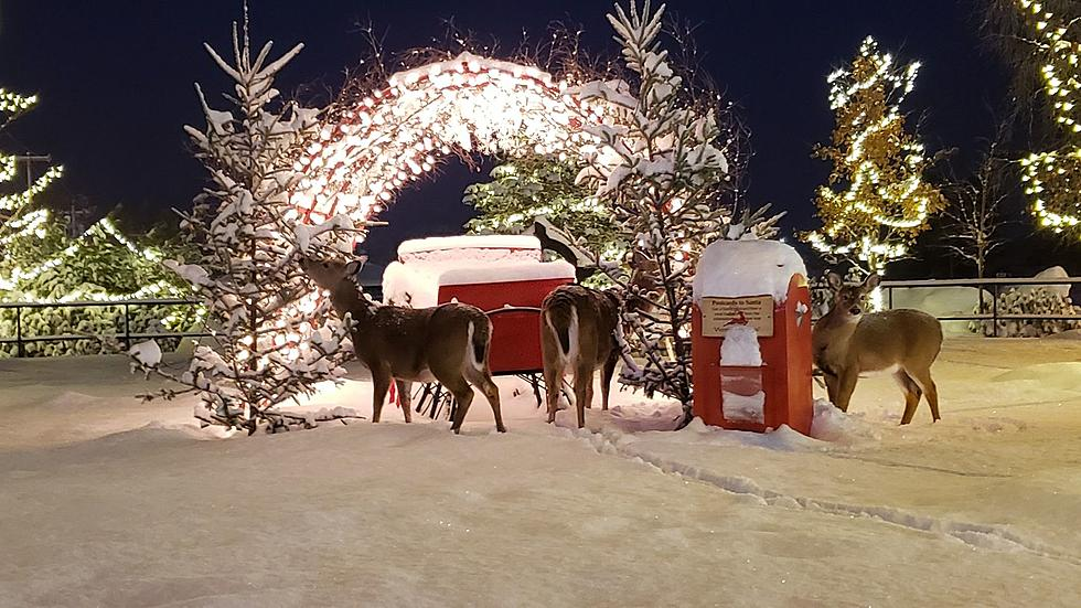 Christmas On Main Old Forge 2020 Take a Stroll Down 'Christmas on Main Street' in Old Forge