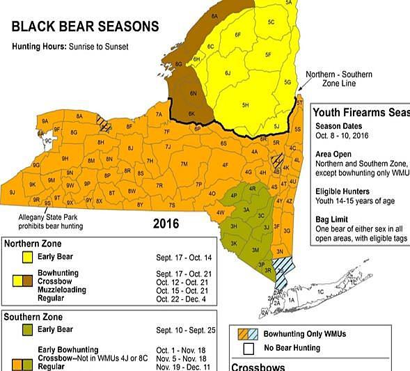 Bear Hunting Season In New York State