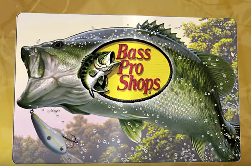 Bass Pro Shop To Purchace Boise Cabela's