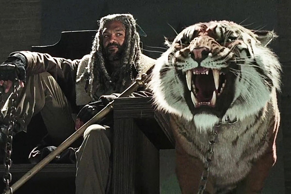 Walking Dead' Made PETA Happy With Fake Tiger, Unlike 'Zoo'