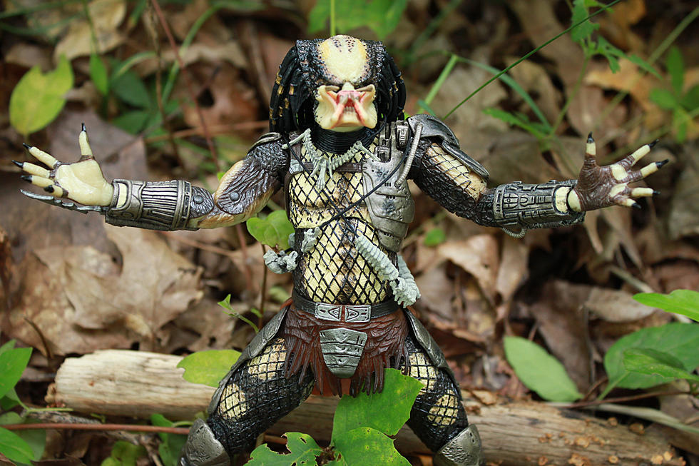 NECA's Ultimate Jungle Hunter Predator Was Worth The 30-Year