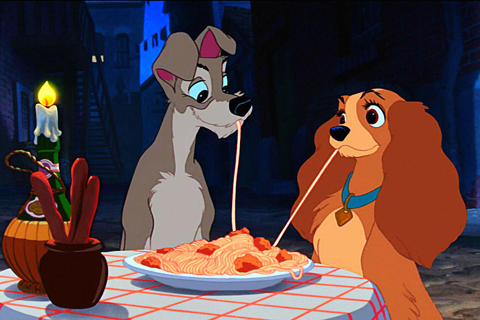 Meet The Rescue Dogs Starring In The Lady And The Tramp Remake