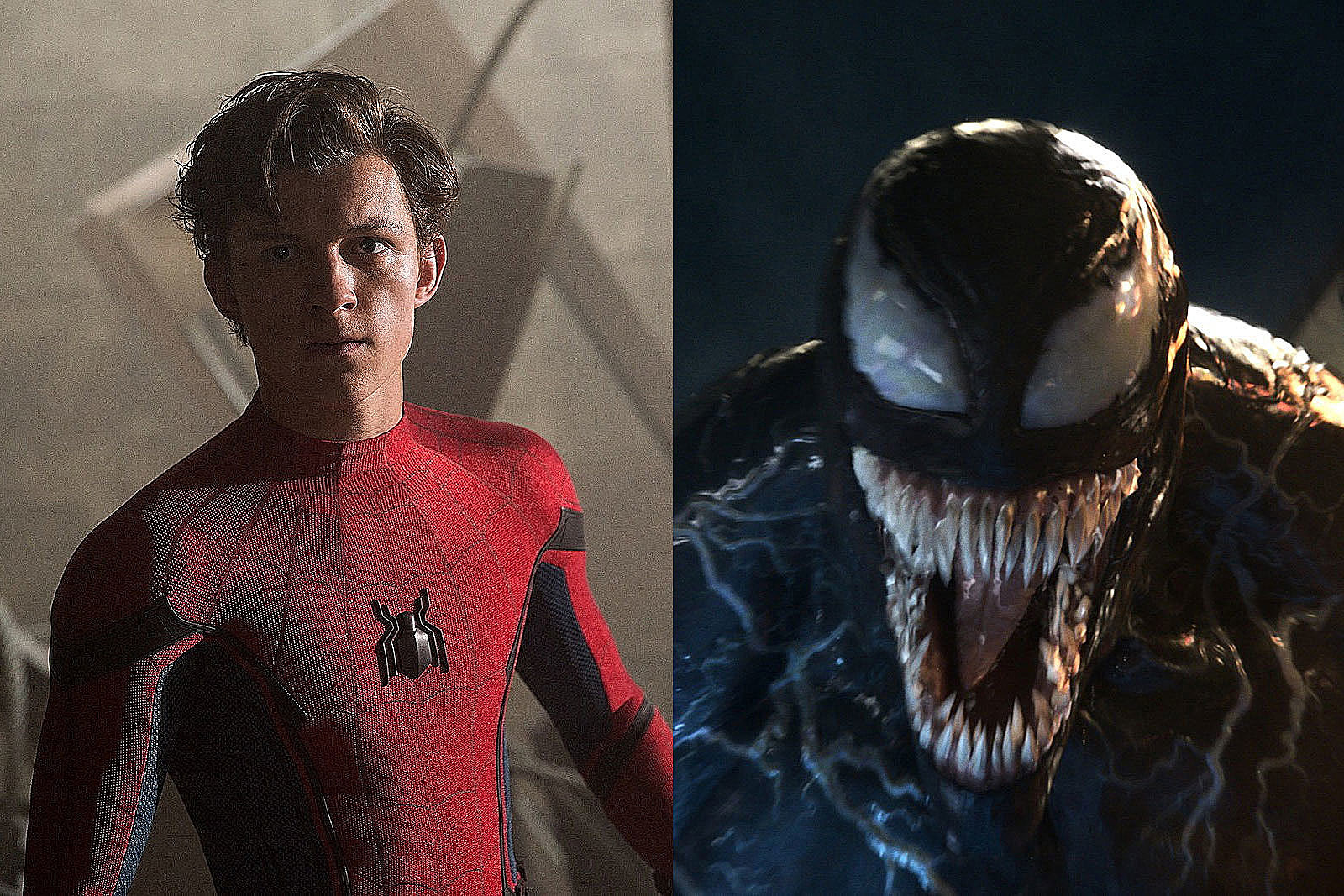The Spider-Man and Venom symbiote Crossover Film Is Coming, Says Director
