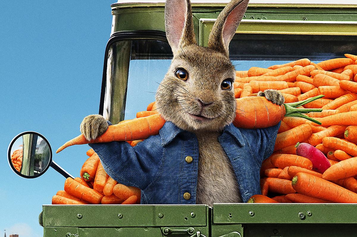Resultado de imagem para petter rabbit 2