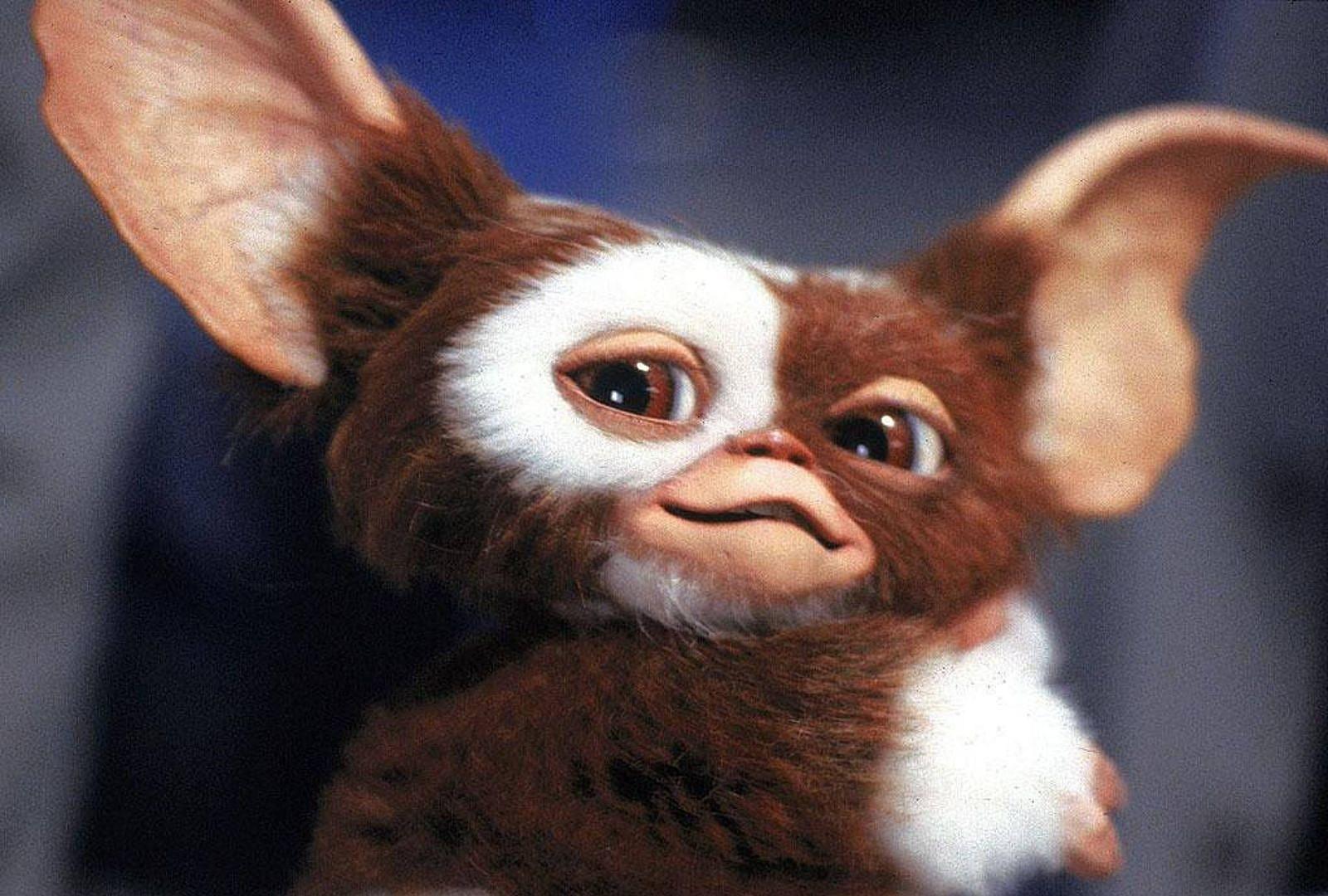 'Gremlins 3' Won't Have CGI