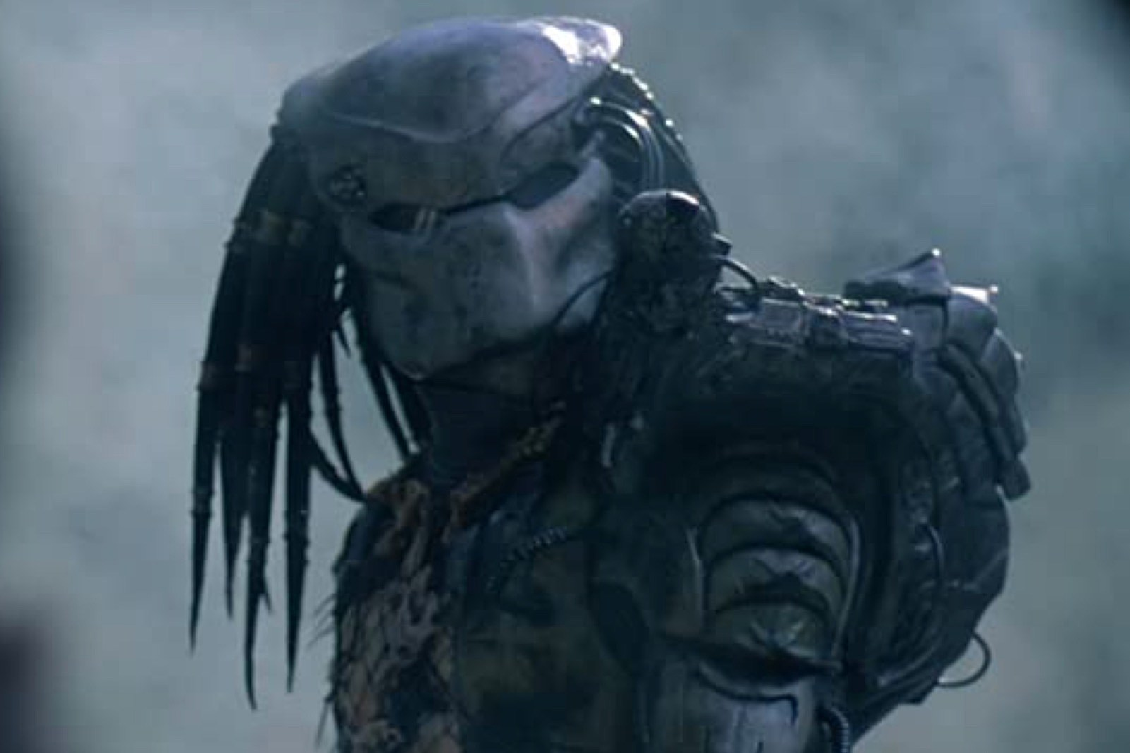 'Predator 5' May Be Set
