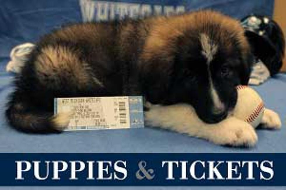 Puppies To Deliver West Michigan Whitecaps Tickets