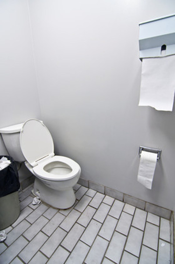 живой туалет в офисе ждем ваших отзывов