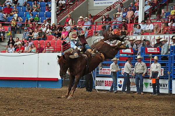 Greeley Stampede Rodeo Featured In Movie On Netflix Video