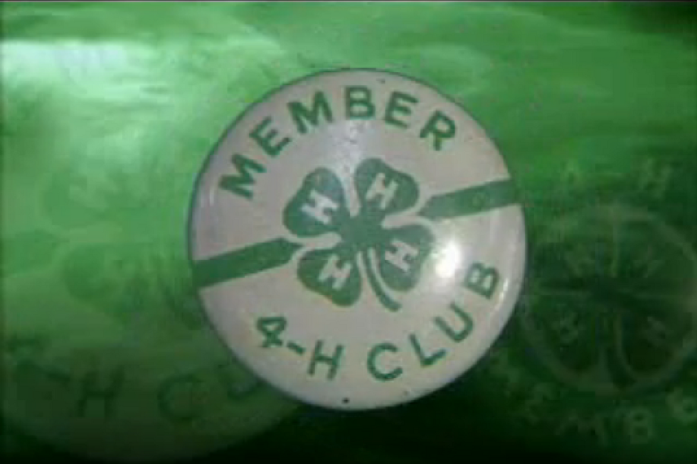 What Do The 4 H's Stand For In 4-H Clubs?