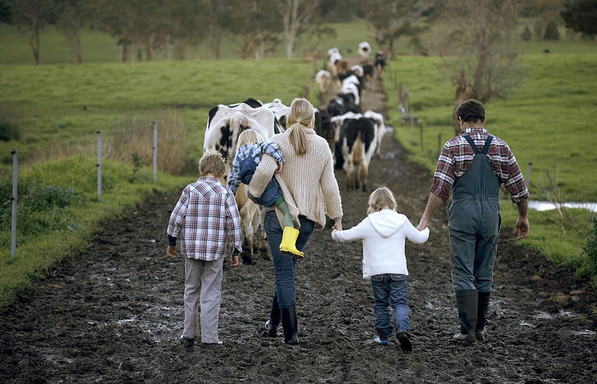 картинка семейная ферма вместе простыми людьми