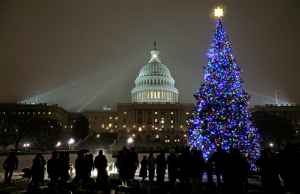 Christmas In Dc.The Capitol Christmas Tree Is Heading From Minnesota To