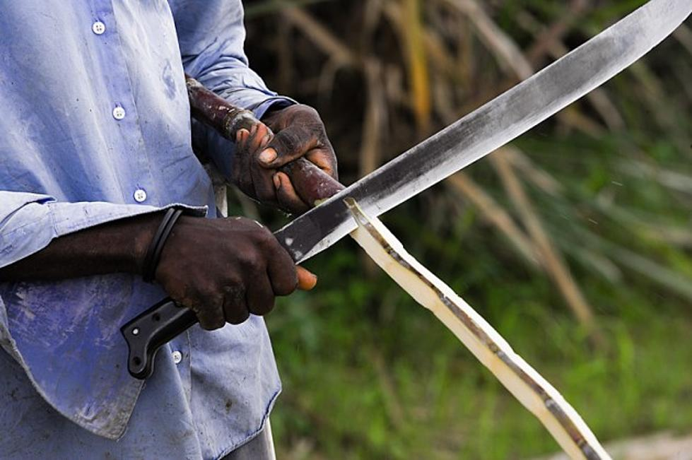 Image result for man with machete