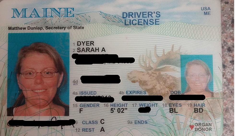 drivers licence photo near me