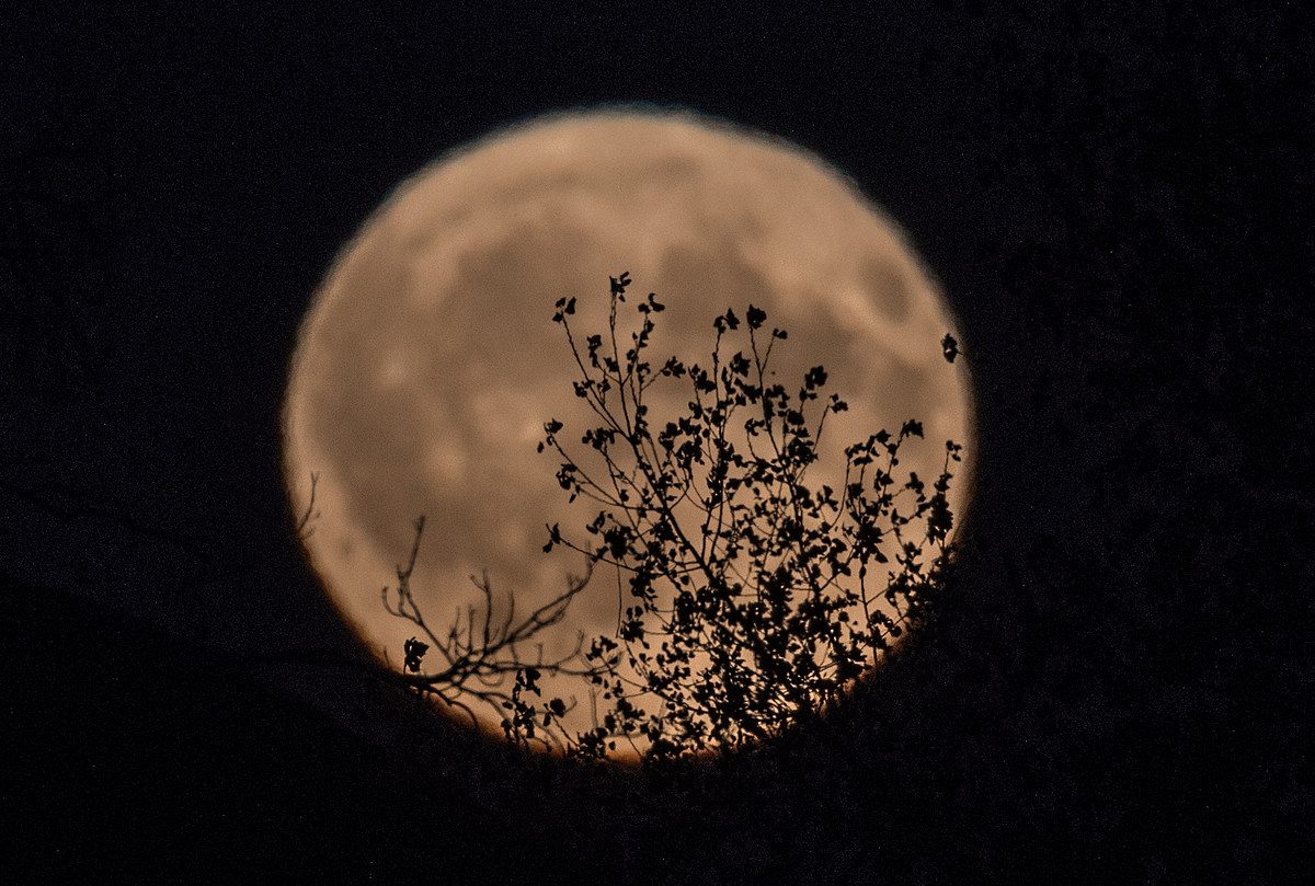 There's Going to be a Full Moon on Friday the 13th