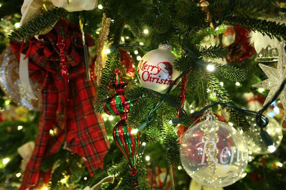 Christmas Tree In Around Augusta