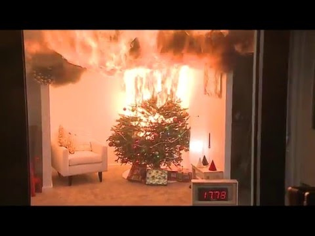 Christmas Tree Not Taking Water.Water That Christmas Tree So It Does Not Become Fire Hazard