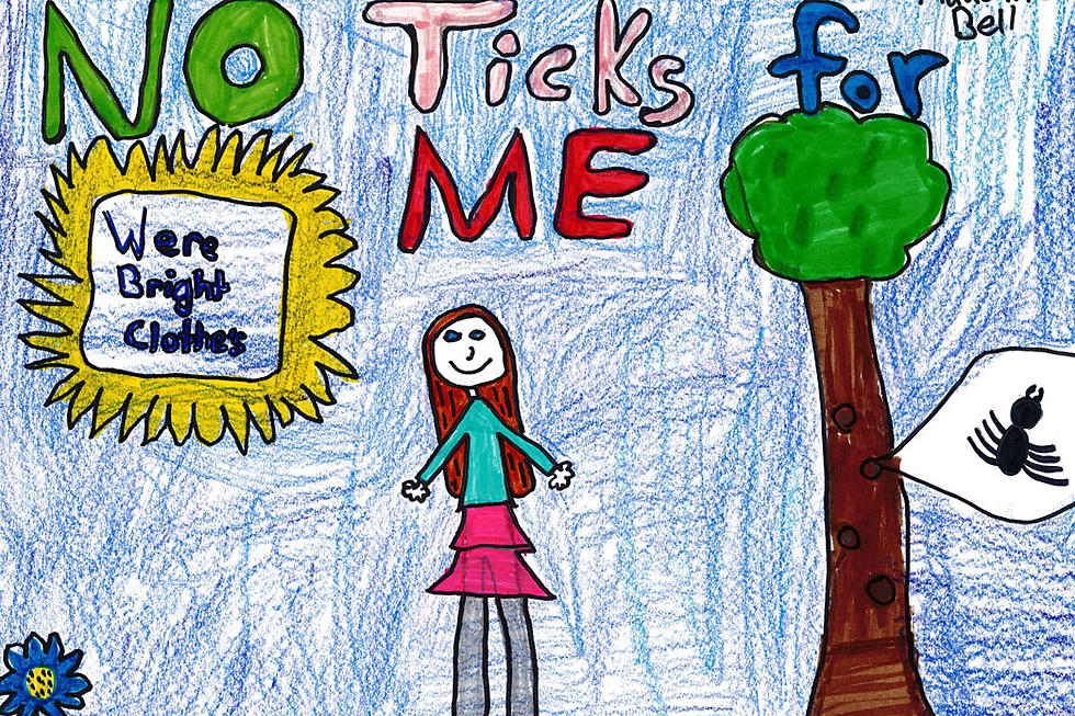 Poster Contest For Maine Kids to Educate About Lyme Disease