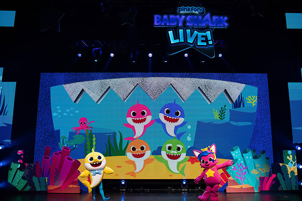 Bangor Home Show 2020.Baby Shark Live Coming To Bangor In 2020