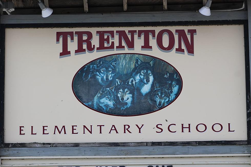Trenton Art Fair 2020.Trenton Elementary Craft Fair Saturday November 16