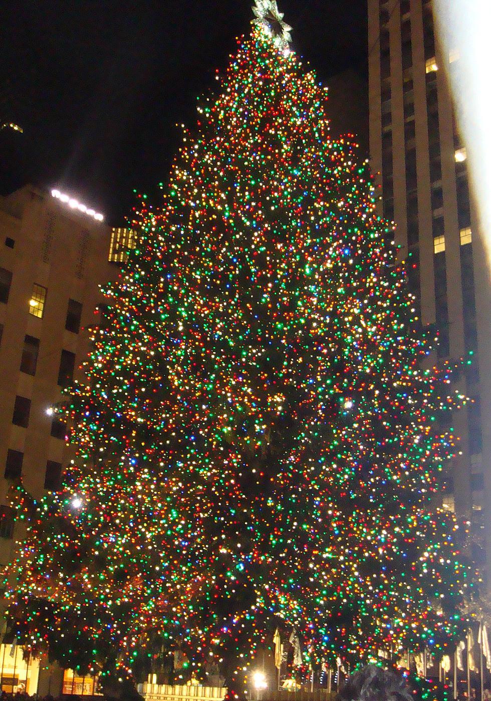 Rockefeller Center Christmas Tree.Transporting The Xmas Tree To Rockefeller Center