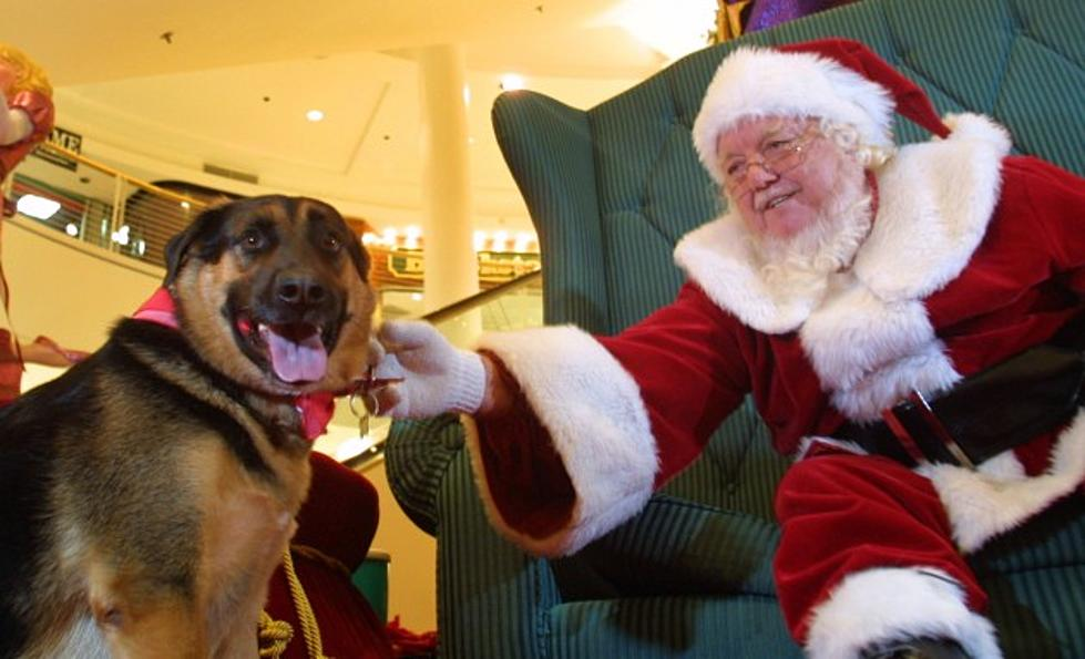 Petsmart Christmas Eve Hours.Santa Claws Is Coming To Petsmart This Saturday