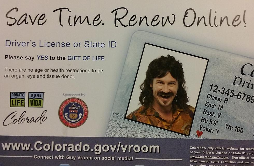 renew drivers license card online